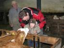 Kälbchen leckte dem Kleinen gerade übers Gesicht und er lacht.