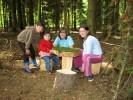 Sitzplatz vor der selbstgebauten Waldhütte im nahegelegenen Wald